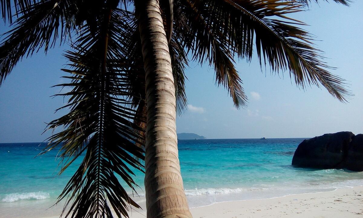 ausfluege khao lak khao lak ausfluege simmilan islands schnorcheln similan islands