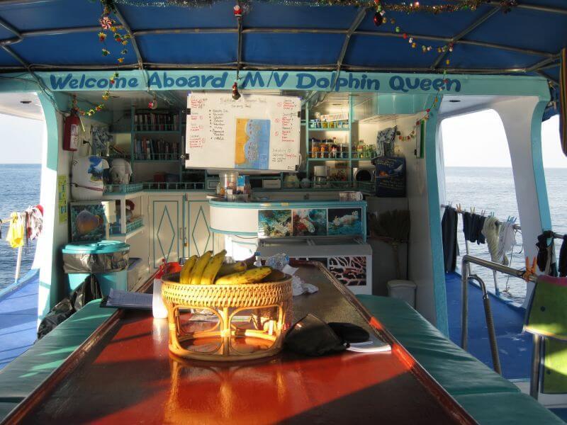 Tauchsafari Khao Lak Similan Islands Koh Bon Koh Tachai Richelieu Rock Tauchen Thailand