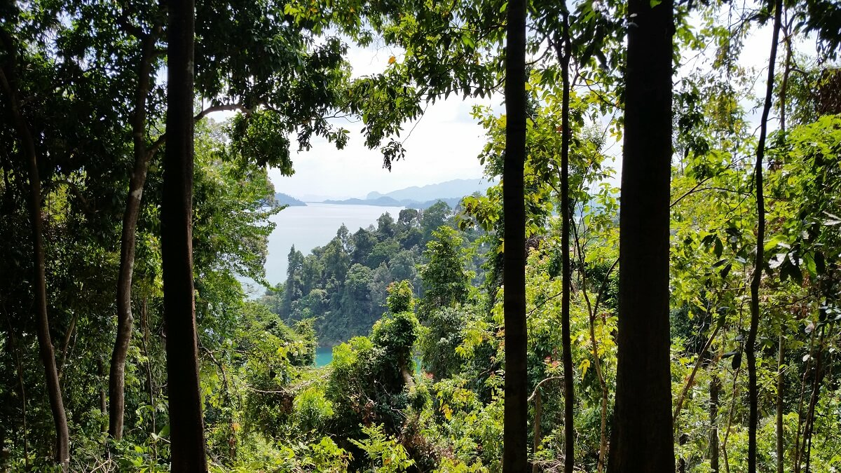 khao Sok See Khao Lak Adventures Khao Sok Nationalpark See Tagestour