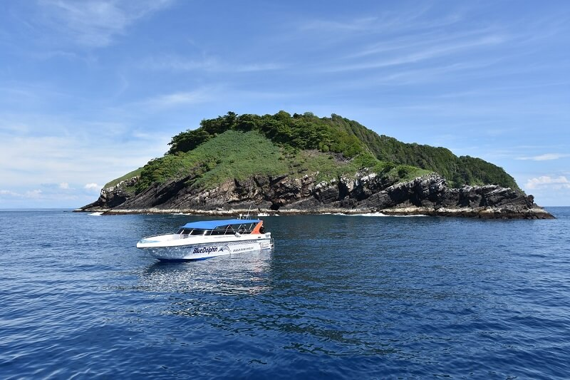 Tauchen Similan Islands, koh bon, koh tachai, Richelieu Rock Tagestrip KhaoLak Adventures